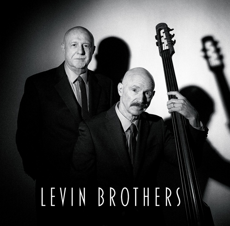Levin Brothers - Levin Brothers Vinyl LP