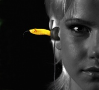 Quarkie Yellow Viper Head In Ear Headphones