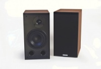 Icon Audio MFV2 Speakers