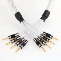 QED Genesis Bi-Wire Speaker Cable (Terminated)