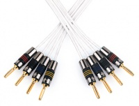 QED Silver Anniversary XT Bi-Wire Speaker Cable (Terminated)