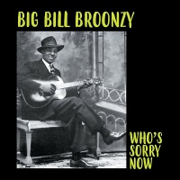 Big Bill Broonzy - Who's Sorry Now Vinyl LP WLV82071