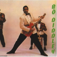 Bo Diddley - Bo Diddley VINYL LP WLV82041