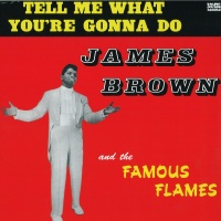 James Brown & The Famous Flames - Tell Me What You're Gonna Do VINYL LP WLV82050