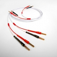 Chord Company Sarsen Speaker Cable 6M (Terminated)
