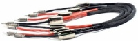 Black Rhodium Thunder DCT ++ Crystal Sound Monoblock Master Cable